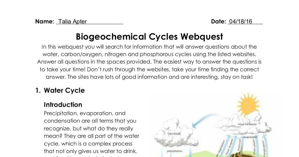 Biogeochemical Cycles Webquest | DocHub